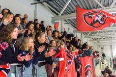 Bøtta er hjemme! | Oslo Tigers