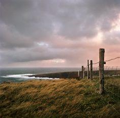 Fence In Ireland ~ Danielle D. Hughson