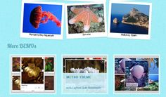 Ultimate Plugins for jQuery Effects, jQuery Sliders, jQuery Forms and jQuery Slideshows