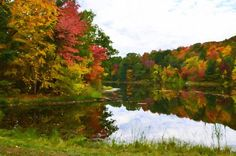 New print available on lanjee-chee.artistwebsites.com! - 'Autumn with colorful foliage and water reflection 11' by Lanjee Chee - http://lanjee-chee.artistwebsites.com/featured/autumn-with-colorful-foliage-and-water-reflection-11-lanjee-chee.html via @fineartamerica