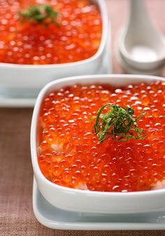 Ikura-don...Salmon roe on rice.
