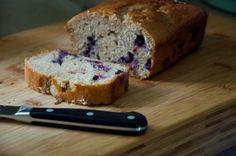 Blueberry Amish Friendship Bread Recipe // Dula Notes