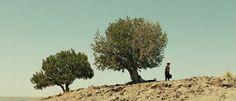 No Country for Old Men, 2007. Dir: Ethan Coen & Joel Coen