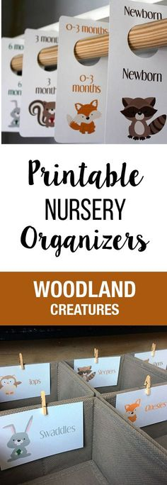 Everything You need for your Baby clothes organization! Closet Dividers, Dresser Drawer labels. These are Printable and DIY! Baby Boy, Woodland Creature, Nursery Organization, Baby Shower Gifts, Animals, Nursery Decor, Baby Room Decorations, Baby Room Theme.