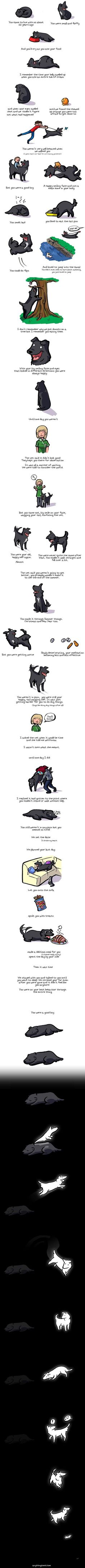 Heartwarming Illustration Of A Dog's Life Will Make You Want To Hug Your Pup Forever (Anything Comic)