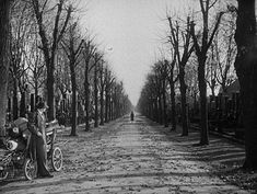 The brilliant final shot from The Third Man (Carol Reed, 1941)