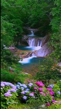 Beautiful Nature Pictures, Beautiful Nature Wallpaper, Nature Photos, Amazing Nature, Beautiful Landscapes, Nature Nature, Flowers Nature, Landscape Photography, Nature Photography
