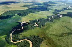 De moerassen in het stroomgebied van de Iberá in Noord-Argentinië vormen het leefgebied van kaaimannen, de manenwolf, capibara's, brulapen en meer dan 300 verschillende vogelsoorten. De totale oppervlakte van dit gebied is maar liefst 13.000 vierkante kilometer. Een bezoek brengen aan dit unieke deel van Argentinië? Informeer naar de mogelijkheden bij Moments!