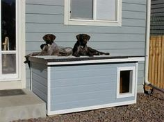 Colorado: several years of being tried and tested this dog house has been proven to be the most comfortable and the safest home you can build for your beloved dogs. Build A Dog House, Dog House Plans, Small Dog House, Winter Dog House, Custom Dog Houses, Dog Toilet, Woodworking Guide, Police Dogs, Animal Projects
