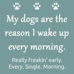 So true my dog makes me pick him up and put him on the bed... every morning... like three times