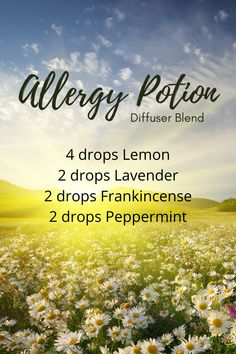 Essential Oils Allergies, Essential Oils Guide, Essential Oil Uses, Doterra Essential Oils, Essential Oil Combinations, Sent Bon, Fitness Workouts, Essential Oil Diffuser Blends, Aromatherapy Oils