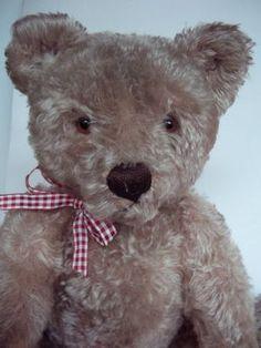 "19""Vintage Steiff Bear 50's......Photo via ebay"