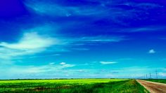 Canola Road in Eastern Manitoba Flora And Fauna, Wonderful Things, Wildlife, Clouds, Travel, Outdoor, Outdoors, Viajes, Trips