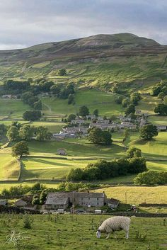 "England Travel Inspiration - ""Yorkshire Dales, England by Pixelda "" Yorkshire England, Yorkshire Dales, North Yorkshire, England And Scotland, England Uk, Leeds England, Bósnia E Herzegovina, Places To Travel, Places To Visit"