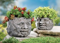 Amazon.com : Rock Face Garden Planters By Collections Etc : Wall Head Planter : Patio, Lawn & Garden