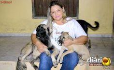 Sem apoio da prefeitura, defensores tentam reduzir a população de animais nas ruas de Cajazeiras