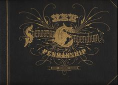 The New Spencerian Compendium Of Penmanship. Typography Letters, Hand Lettering, Calligraphy I, Handwriting Analysis, Type Treatments, Large Letters, Fountain Pen Ink, Penmanship, Wedding Announcements
