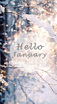 Hello January Fifteenth