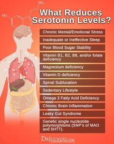 Do You Have Low Serotonin Levels? - DrJockers.com
