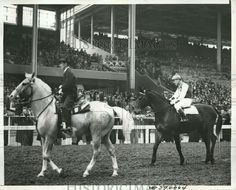 Pumpkin  and Seabiscuit