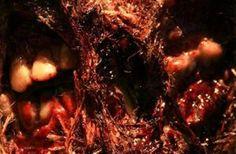 315am-french-found-footage-horror