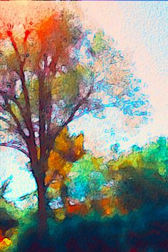 Sunlight peeping through the tree captured and rendered via #AurynCam, a FREE #iPhone app, via Flickr