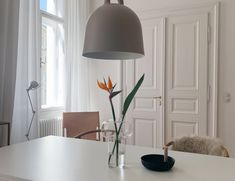 Odds & Ends - traumzuhause Farrow Ball, Living Room Decor Curtains, Bali House, Eco Friendly Paint, Ball Lights, Classic Interior, Green Kitchen, Beautiful Lights, Room Colors