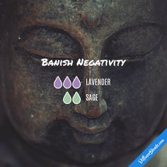 Banish Negativity - Essential Oil Diffuser Blend