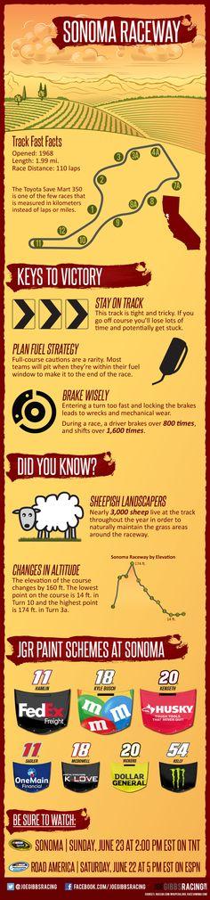 Joe Gibbs Racing Sonoma Raceway Infographic