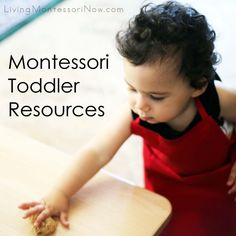 Montessori Toddler Resources