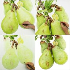 """I scaled these juicy pears up to 55 x 73 cm (22"""" x 29""""). Perfect for painting all that texture!"""
