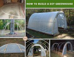 Meisterda omale kasvuhoone