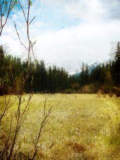 Title: Springtime In The Mountains Artist: Jo-Anne Gazo-McKim Medium: Photograph - Photography