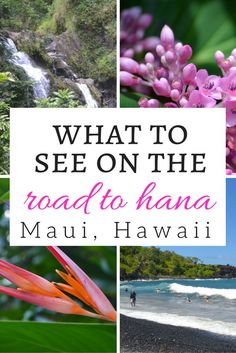 14 Worthy Stops on the Road to Hana in Maui