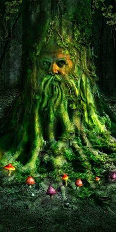 »‡«Green Man»‡«