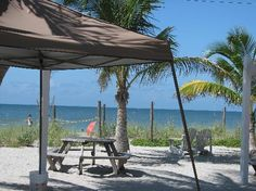 A view from The Mucky Duck.  Good seafood.  Great view.  Captiva Island, FL