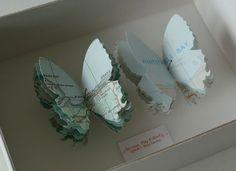 papillons par TRACEY BUSH