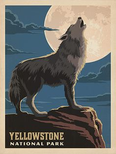 Yellowstone National Park: Gray Wolf - Anderson Design Group has created an award-winning series of classic travel posters that celebrates the history and charm of America's greatest cities and national parks. Founder Joel Anderson directs a team of talen Poster Print, Retro Poster, Poster S, American National Parks, Us National Parks, Posters Decor, Yellowstone Nationalpark, Voyage Usa, Wolf Poster