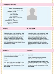 Another Look at the Archaeology Resume / CV | Resume cv and