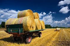 Hay bales on a trailer