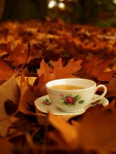 Tea and Fall. Two of My Fave things <3