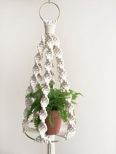 Macrame Plant Hanging Shelf Workshop with Amy Zwikel Studio - Nov 12 and Dec 14 tickets available.