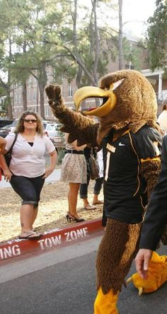 University of Southern Mississippi Golden Eagles costumed mascot Seymour d' Campus waves to fans during the Eagle Walk before USM's home games.