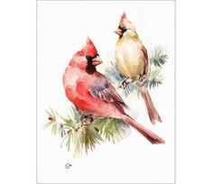 Cardinals Original Watercolor Bird Painting 9 x 12 inches