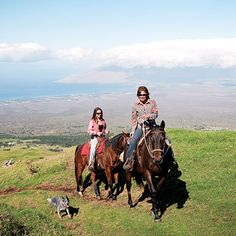 Maui Here are a local's suggestions on the best things to do on the island