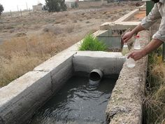 The Guide to Wastewater Treatment: An Eco Solution - Greener Ideal