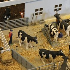 A model size view of a farm can teach life lessons to those not connected to agriculture. Cow Pen, Winchester Firearms, Tractor Room, Cattle Corrals, Farm Village, Farm Layout, Farm Images, Toy Barn, Cattle Farming