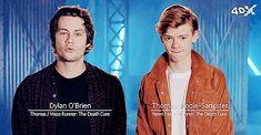 Dylan O´Brien and Thomas Sangster gif