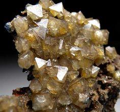 Wardite / Rapid Creek, Yukon Territory, Canada Yukon Territory, Mineralogy, Rocks And Minerals, Fossils, Gemstones, Crystals, Agates, Awesome, Amazing