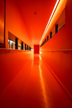 orange leading to a near vanishing point--a door. What door is this year leading towards?